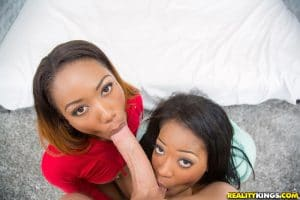 monique-symone-chanell-heart-plan-a-3-round-and-brown-8