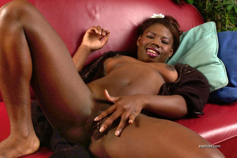 prono africain vivastreet troyes